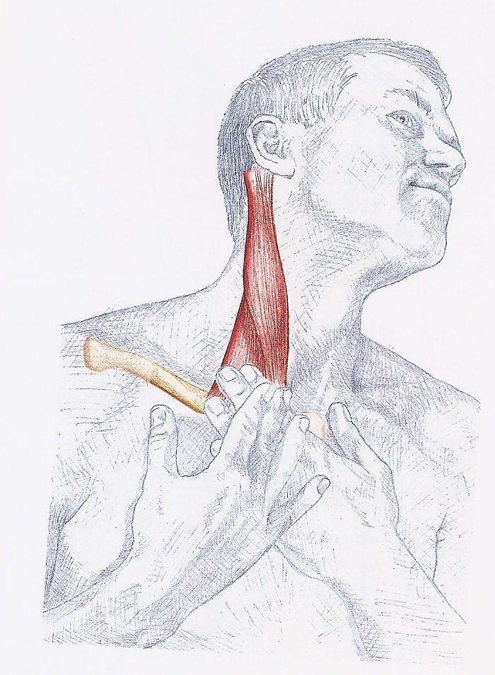 Los aparatos médicos para el tratamiento de la osteocondrosis