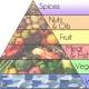 Nutrición Evolutiva